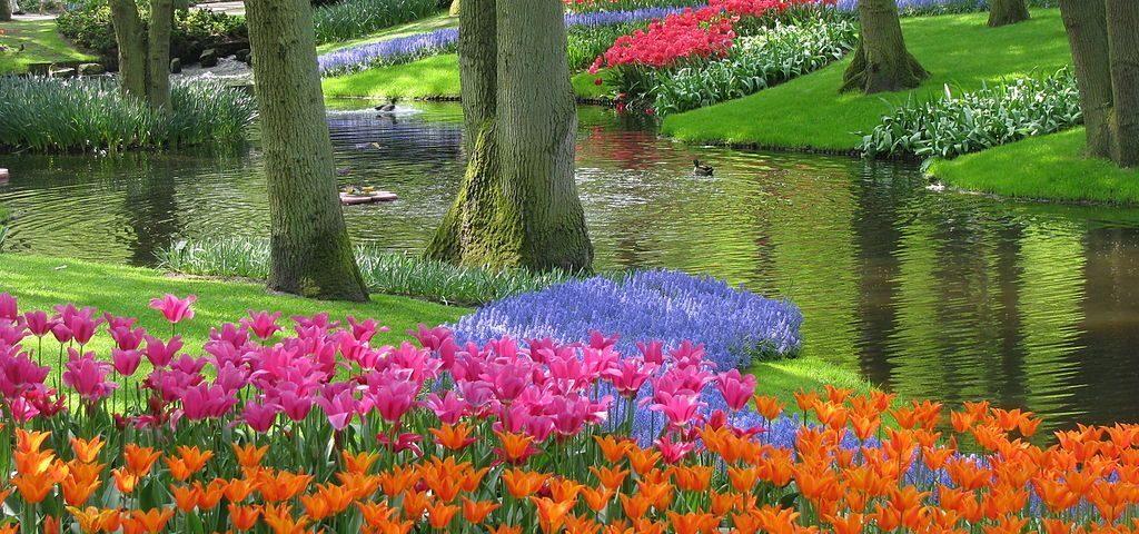 Красочный «Сад Европы»