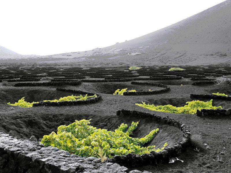 vulkany ostrova lansarote