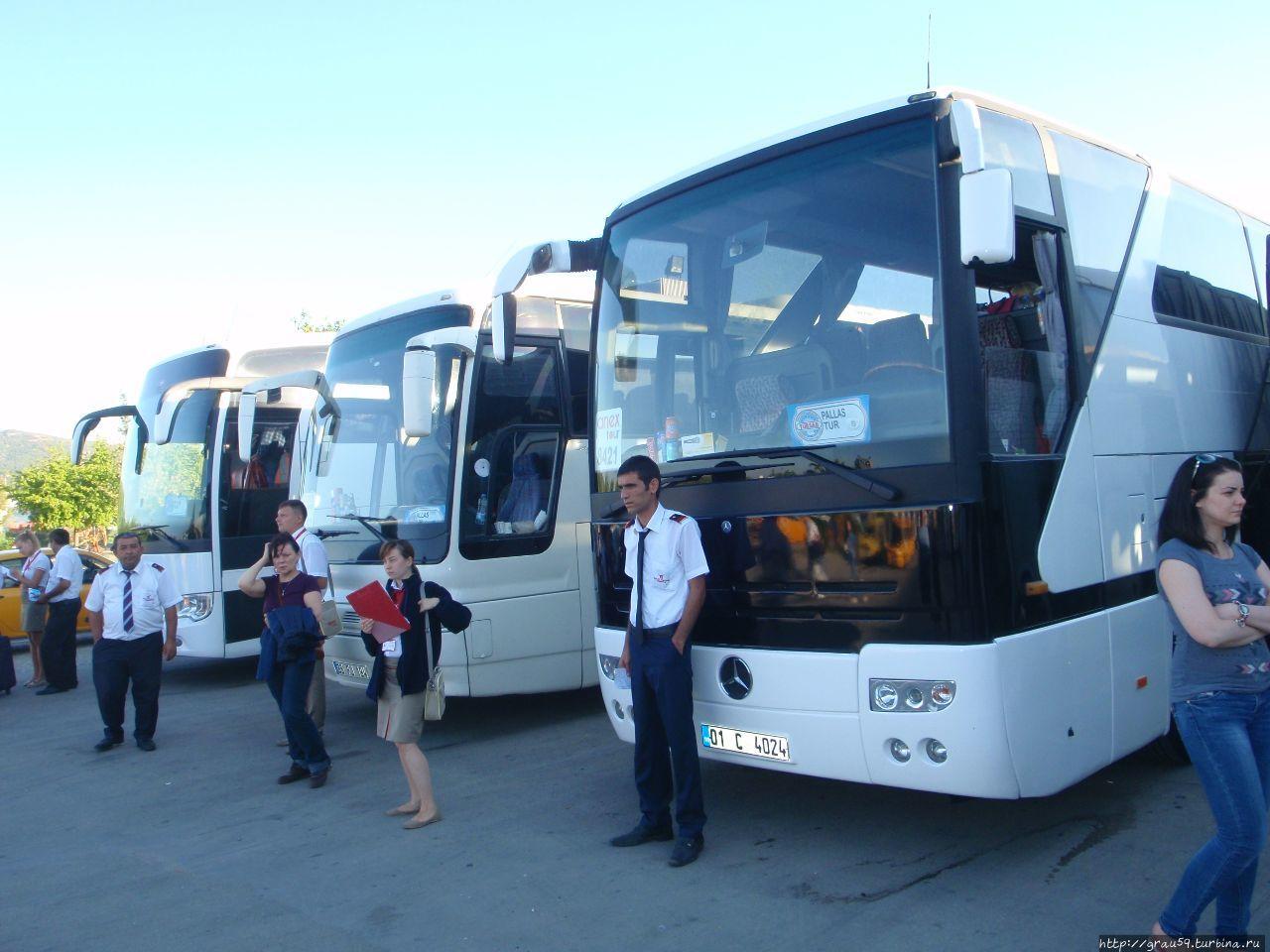 avtobusy turisticheskih kompaniy dlya vstrechi paketnyh turistov