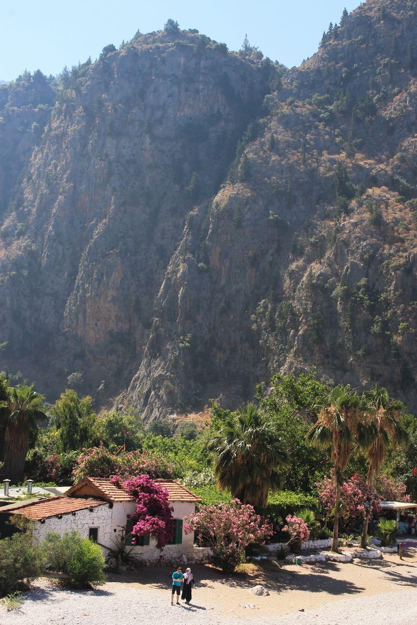 romantika doliny babochek