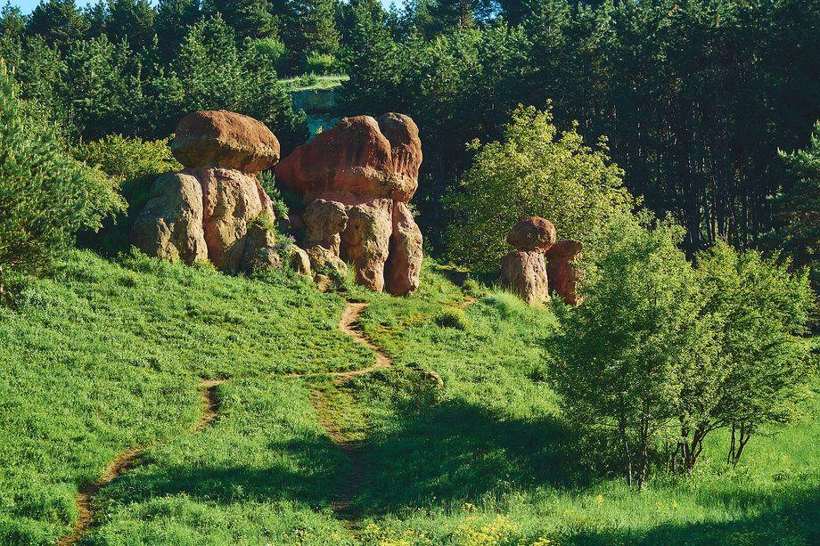 gruppa skal «krasnye griby» v kislovodskom parke